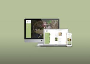PEONY-STORE-LOGO-GRAFICA-SOCIAL-E-SITO-INTERNET-desktop